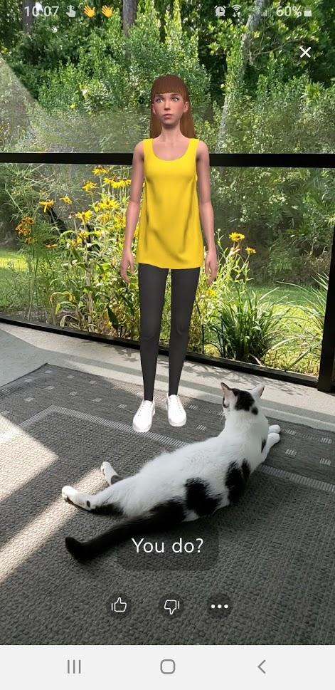 Young Levi Meets Cat